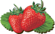 strawberriesheader.png